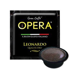 A Modo Mio Opera Leonardo